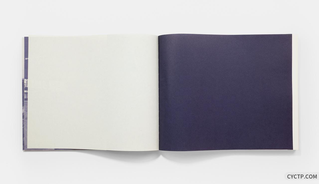 张路江 | 艺术画册「获奖作品」