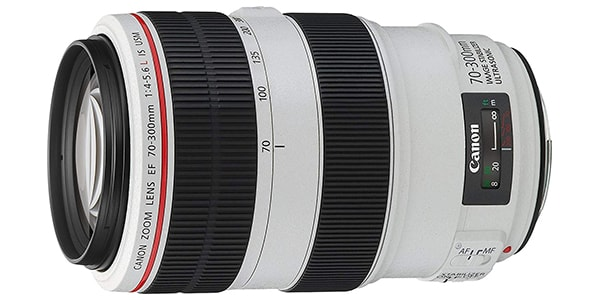 Canon EF 70 300mm f4 5.6L IS USM